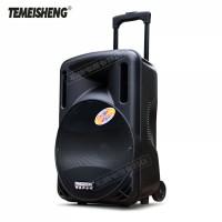 Temeisheng a12-1